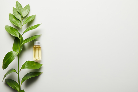 Foto de Top view of essential oil in bottle and green leaves on white background - Imagen libre de derechos