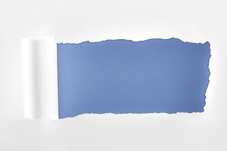 Foto de tattered textured white paper with rolled edge on blue background - Imagen libre de derechos
