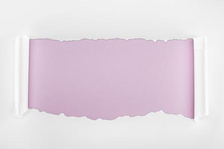 Foto de ripped white textured paper with curl edges on light purple background - Imagen libre de derechos