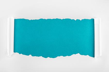 Foto de ripped white textured paper with curl edges on blue background - Imagen libre de derechos