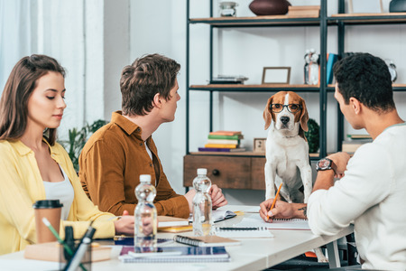 Photo pour Three students with notebooks sitting at desk and looking at beagle dog in glasses - image libre de droit