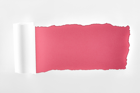 Foto de tattered textured white paper with rolled edge on crimson background - Imagen libre de derechos