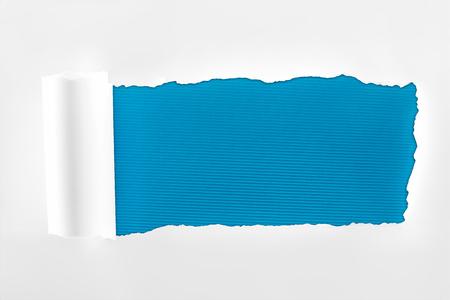 Foto de ragged textured white paper with rolled edge on deep blue background - Imagen libre de derechos