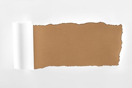 Foto de tattered textured white paper with rolled edge on brown background - Imagen libre de derechos