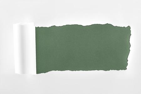 Foto de ragged textured white paper with rolled edge on dark green background - Imagen libre de derechos