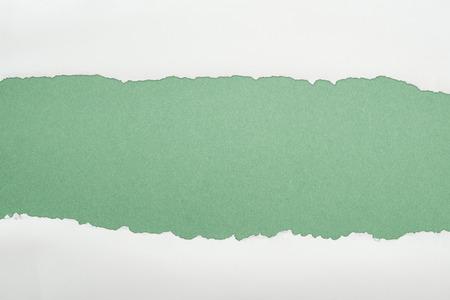 Foto de ragged white textured paper with copy space on green background - Imagen libre de derechos