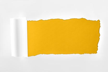 Foto de tattered textured white paper with rolled edge on yellow background - Imagen libre de derechos