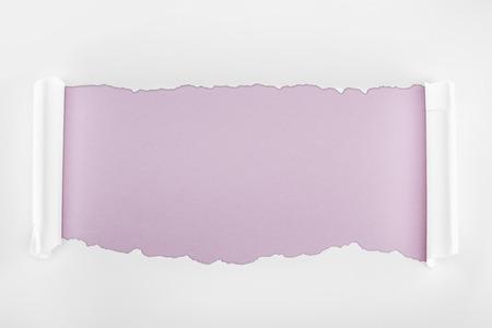 Foto de ragged textured white paper with curl edges on light purple background - Imagen libre de derechos