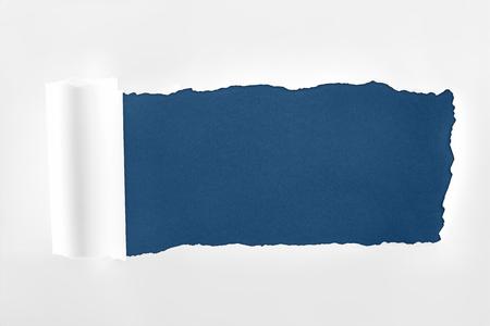 Foto de ragged textured white paper with rolled edge on dark blue background - Imagen libre de derechos