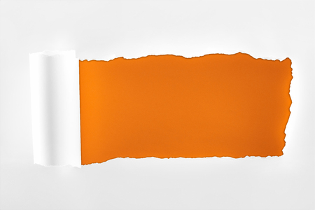 Foto de tattered textured white paper with rolled edge on orange background - Imagen libre de derechos