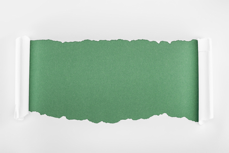 Foto de ragged textured white paper with curl edges on green background - Imagen libre de derechos