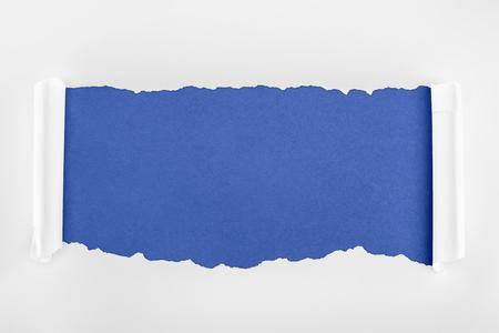 Foto de ragged textured white paper with curl edges on blue background - Imagen libre de derechos