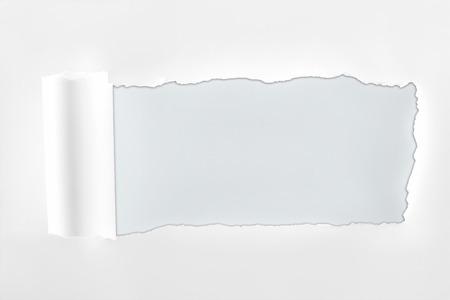 Foto de ragged textured paper with rolled edge on white background - Imagen libre de derechos