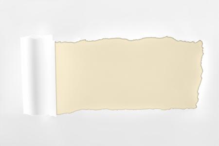 Foto de ragged textured white paper with rolled edge on ivory background - Imagen libre de derechos