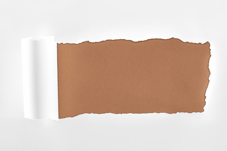 Foto de tattered white paper with rolled edge on brown background - Imagen libre de derechos