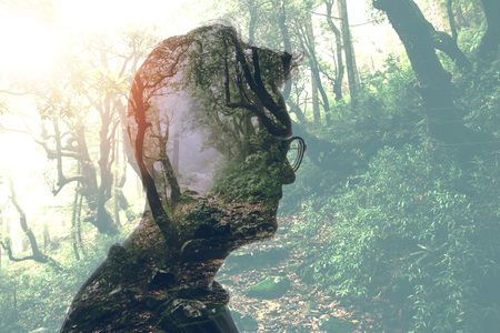 Photo pour Double exposure of man in glasses and green forest - image libre de droit
