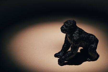 Photo for Toy gorilla under spotlight on black background - Royalty Free Image