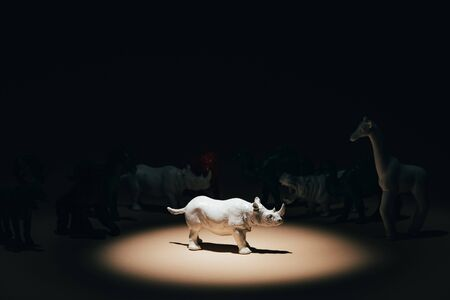 Photo for White toy rhinoceros under spotlight with animals at background, voting concept - Royalty Free Image