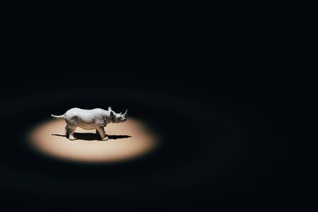 Photo for White toy rhinoceros under spotlight on black background  - Royalty Free Image