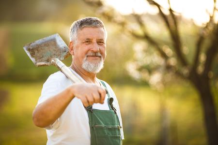 Foto de Portrait of a handsome senior man gardening in his garden, on a lovely spring day (color toned image) - Imagen libre de derechos