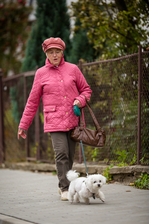 Foto de Senior woman walking her little dog on a city street; looking happy and relaxed - Imagen libre de derechos