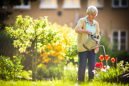 Photo pour Senior woman doing some gardening in her lovely garden - watering the plants - image libre de droit