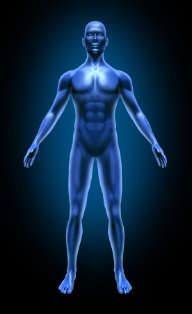 Human body medical x-ray pose chart joints muscles blue symbol