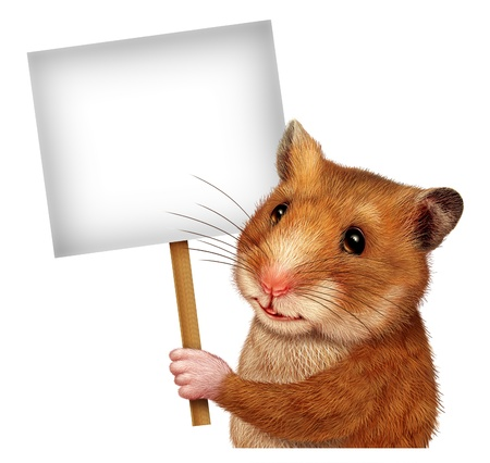 Pet hamster holding a blank white sign on a stick as an advertising and marketing concept with a cute mouse like mammal with a smile communicating an important Veterinary or Veterinarian related message
