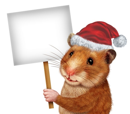 Holiday pet holding a blank white sign as an advertising and marketing concept with a cute mouse like mammal with a smile communicating an important Veterinary or Veterinarian related message