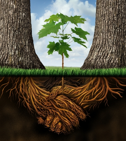 Photo pour New business developmentgrowth concept with a group of two partner trees coming together as plant roots shaped as an agreement handshake resulting in the creation of a new growing team opportunity  - image libre de droit