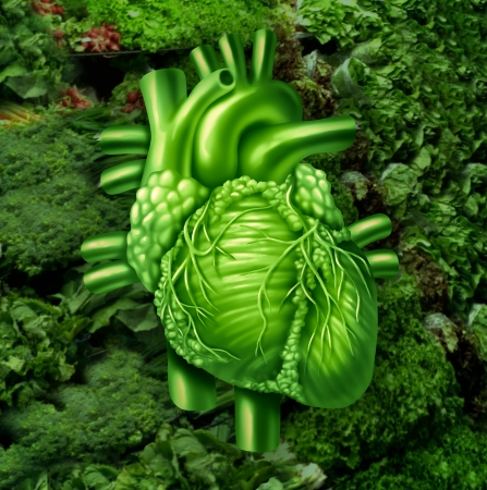 Healthy heart diet with dark leafy green vegetables at a vegetable stand as a health care and nutrition concept for eating natural raw food packed with natural vitamins and minerals good for the human cardiovascular system