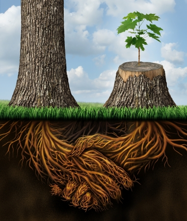Foto de Business help and support concept as a tall tree next to a sick stump with a new growth of hope emerging in cooperation and teamwork with the roots shaped as a handshake providing the strength for success  - Imagen libre de derechos