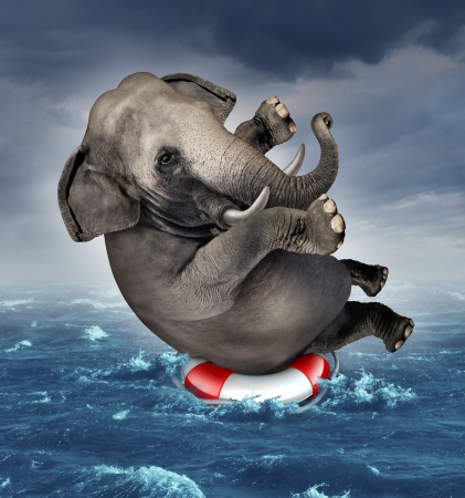 Foto de Surviving adversity and managing risk for big business challenges and uncertainty with a large elephant floating on a life preserver in a storm ocean background overcoming fear of loss for goal success  - Imagen libre de derechos