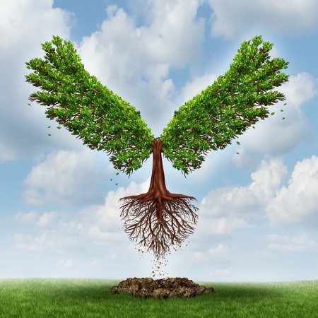 Foto de Moving up and the power of success with a growing  tree in the shape of wingsthat has emerged out of the ground and has taken flight upward to opportunity as a business concept of the evolution of successful leadership and strategic planning  - Imagen libre de derechos