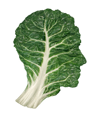 Photo for Human healthy diet concept with a dark green leafy kale or collard leaf in the shape of a head as a symbol of fresh vegetable eating and intelligent dieting using farm fresh natural organic produce from the local market  - Royalty Free Image