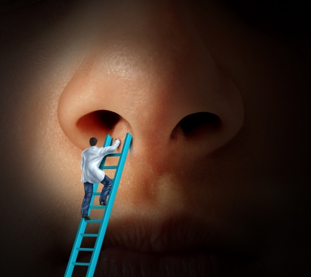 Foto de Medical nose care concept with a doctor climbing a ladder to examin if rhinoplasty or cosmetic plastic surgery is needed and for a diagnosis on a patient that may have breathing problems due to infection or nasal or sinus disease  - Imagen libre de derechos
