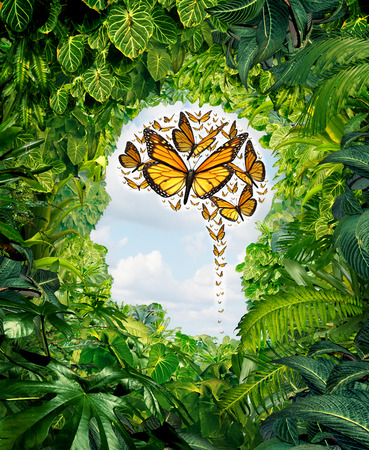 Foto de Intelligence and human creativity as a freedom of ideas symbol on a green jungle landscape shaped as a head and a group of flying monarch butterflies in the shape of a brain as a mental health and education metaphor for the potential of the mind  - Imagen libre de derechos