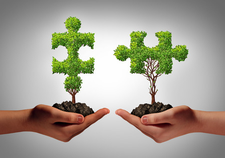 Photo pour Team collaborate business concept with two human hands holding trees shaped as a jigsaw puzzle coming together as a success metaphor for growing cooperation and to build a  teamwork agreement  - image libre de droit