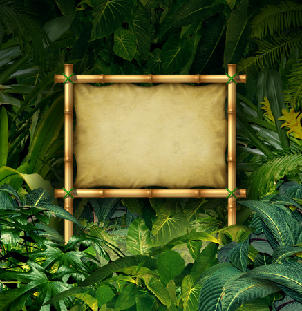 Photo pour Jungle sign blank billboard concept as a bamboo banner in a tropical plant forest full of green vegetation as a symbol of nature communication or environmental advertising  - image libre de droit