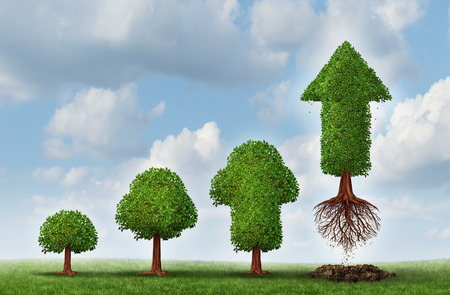 Foto de Investment success as a business concept for growing wealth as a small tree  gradually turning into a mature flying arrow plant as a financial metaphor for a successful investing strategy  - Imagen libre de derechos