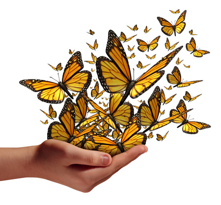 Foto de Hope and freedom concept as a human hand releasing a group of butterflies as a symbol for educationcommunication and spreading ideas with social marketing isolated on a white background. - Imagen libre de derechos