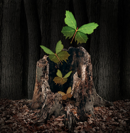 Photo for Afterlife and rebirth concept as a group of leaves shaped as flying butterflies rising out of a dead decaying tree stump as a symbol of a soul leaving the body the a birth of new life after death with hope for the future. - Royalty Free Image