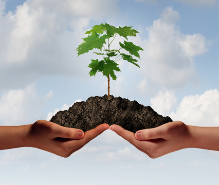 Photo pour Cooperation growth business symbol as two hands holding up a heap of earth with a tree sapling growng. - image libre de droit