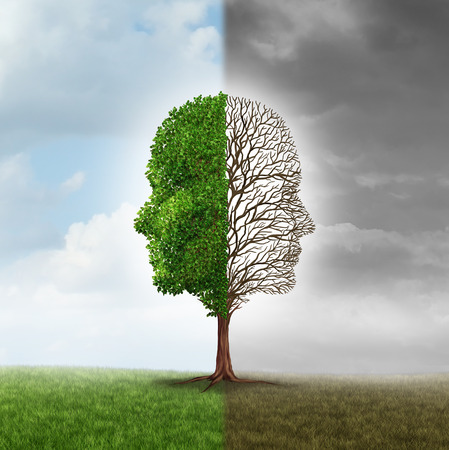 Foto de Human emotion and mood disorder as a tree shaped as two human faces with one half empty branches and the opposite side full of leaves in the summer as a medical metaphor for psychological issues pertaining to contrast in feelings. - Imagen libre de derechos