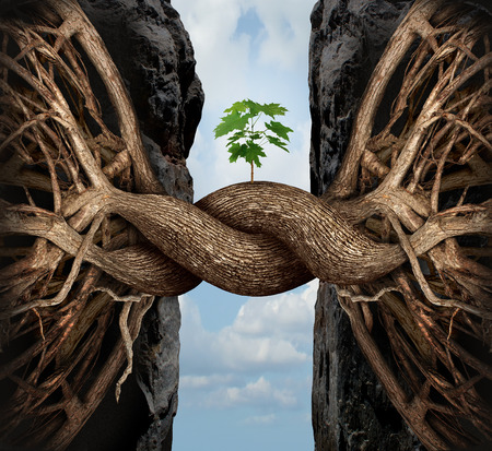 Foto de Unity growth concept and bridge the gap business symbol as two tree roots on a high steep cliff connecting and merging together bridging together to form a new sapling as an icon of partnership success and strength. - Imagen libre de derechos