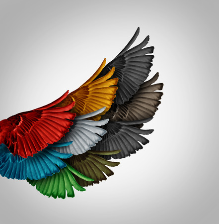 Foto de Alliance concept and working together business idea as a diverse group of bird wings coming as one to form a giant powerful wing as a synergy metaphor for cooperation success and employee support. - Imagen libre de derechos
