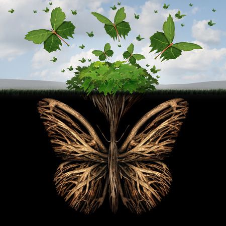 Foto de Strong foundation concept as the roots of a plant shaped as a butterfly and the leaves of a bush in the shape of flying butterflies as a creative base symbol and the power of freedom and imagination. - Imagen libre de derechos