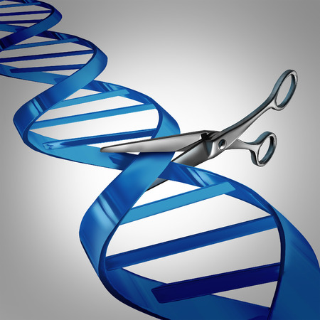 Foto de Gene editing health care concept as molecular scissors cutting a dna strand as a medical science and biology technology symbol for changing genetic material to help cure disease. - Imagen libre de derechos