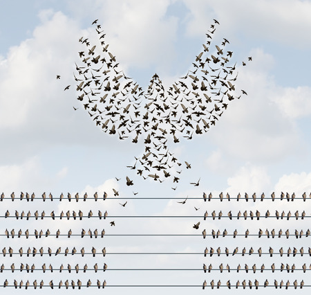 Foto de Successful organization business concept as a group of birds on a wire with a team flying away and forming a flying bird shape with open wings as a metaphor for courage to create new opportunities. - Imagen libre de derechos
