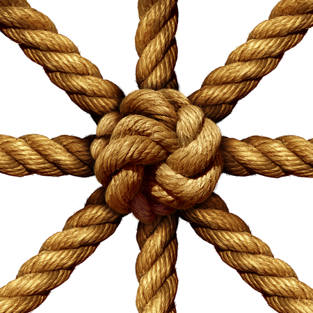 Photo pour Connected Group business concept and unity symbol as a collection of thick ropes coming together tied in a knot at the center as a symbol for network strength and unity support isolated on a white background. - image libre de droit